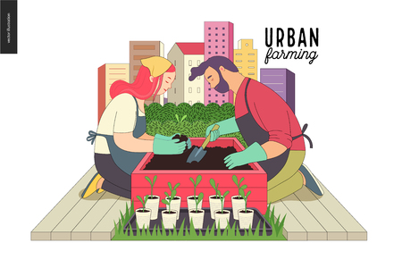 Urban farming, gardening or agriculture. A man and a woman planting out the sprouts to the wooden package bed with a city tower buildings on the background