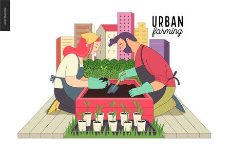 Urban Farming, Gartenbau oder Landwirtschaft. Ein Mann und eine Frau, die heraus die Sprösslinge zum hölzernen Paketbett mit Stadtturmbauten auf dem Hintergrund auspflanzen