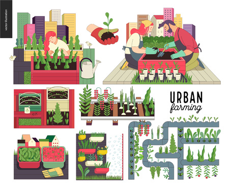 Urban farming, gardening or agriculture set. Planting, harvest, wooden seedbeds, planting on rails, vertical farming and hydroponics.