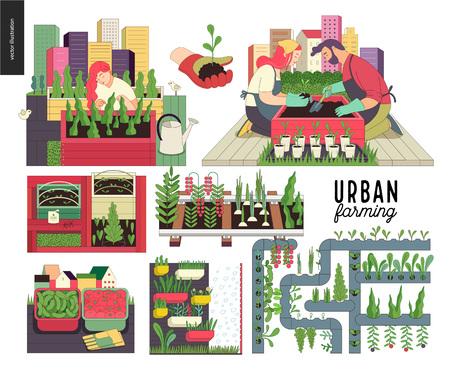 Städtische Landwirtschaft, Garten- oder Landwirtschaftsset. Pflanzen, Ernten, hölzerne Saatbeete, Pflanzen auf Schienen, vertikale Landwirtschaft und Hydrokultur.