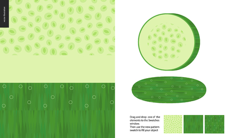 Food patterns, vegetable, flat vector illustration -cucumber texture, half of cucumber image and two seamless patterns of cucumber fresh pulp full of white greenish seeds and dark green fresh rind. Illustration