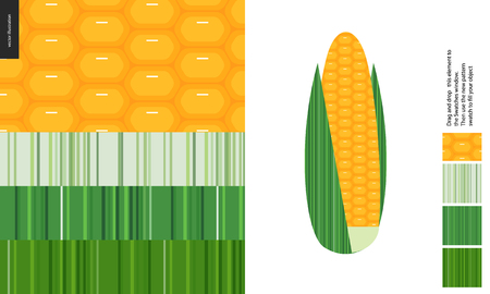 Food patterns, vegetable, flat vector illustration -corn textures, a corncob image and four seamless patterns of corn fresh pulp and striped leaf textures of different tones - from white to dark green