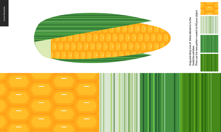Food patterns, vegetable, flat vector illustration -corn textures, a corncob image and four seamless patterns of corn fresh pulp and three leaf textures of different tones - from white to dark green