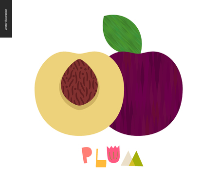Food patterns - fruit, vector flat illustration of plum - simple half of plum fruit full of firm yellow pulp, purple rind, brown seed, and lettering. Perfect for t-shirt, bag, other textile decoration Standard-Bild - 114861899