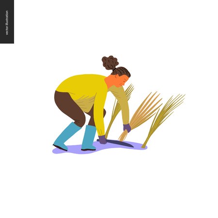 Harvesting people - vector flat hand drawn illustration of a young woman wearing rubber boots collecting rice cutting it with a long knife. Self-sufficiency, farming and harvesting concept