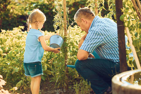 祖父は孫娘の野菜に水をまきます。 写真素材 - 84968928