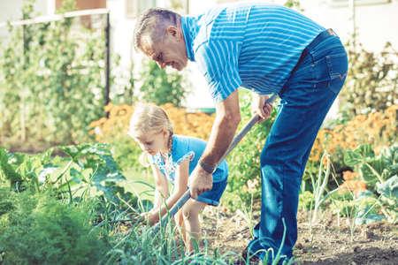 祖父は彼の孫娘と彼の庭の世話です。
