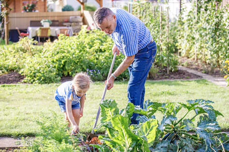 Grandfather is hoeing garden with his granddaughter. 写真素材 - 102894833