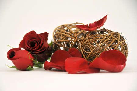 rose decoration Stock Photo