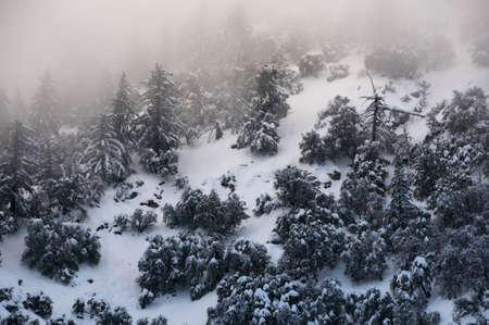 snowy mountains 免版税图像 - 6376998