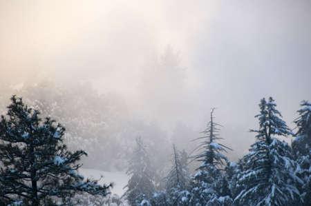 cloud drift: snowy mountains