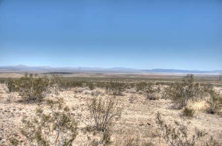 desert landscape 免版税图像