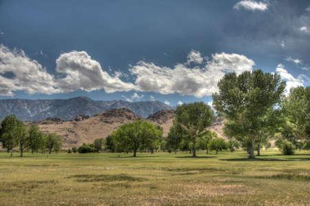 ranch landscape