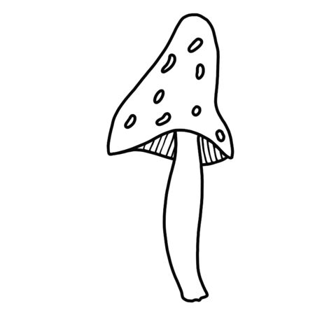 The mushroom, edible poisonous wild mushrooms.Line drawing, coloring