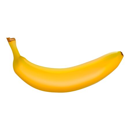 Vector illustration of a detailed shiny yellow banana. Isolated on a white background. Photorealistic fruits. For printing, banner