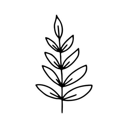 Branch with leaves drawing a line.Contour drawing made by hand.Floral design, for decoration, bouquets, decoration.Doodles.Black and white image.Isolated on a white background.Vector image