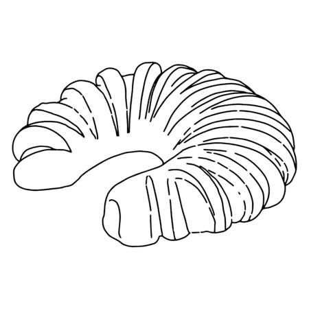 Twisted roll.Cakes in the style of Doodle.Outline drawing by hand.Black and white image.Monochrome.Bakery.Sweets.Sponge roll with poppy seeds.Vector illustration.
