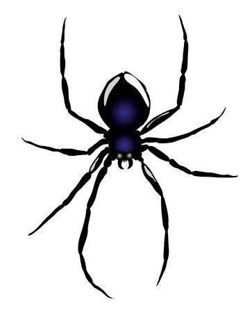 Vector. Spider Stock Vector - 3542370