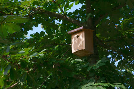 Bird house hanging from the tree with the entrance hole in the shape of a heart  photo