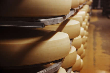 factory farm: Photo of a cheese factory in Switzerland