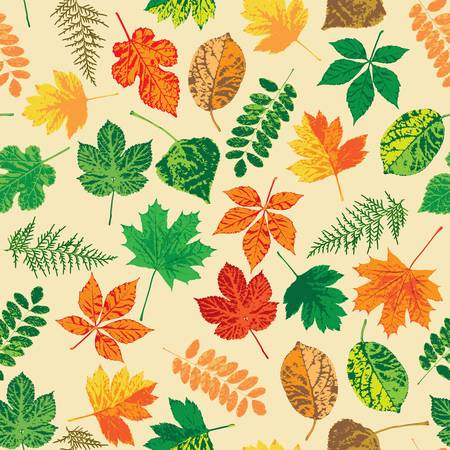 Autumn leaves, seamless Vector