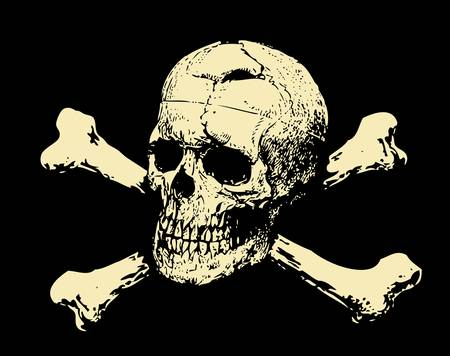 pirates flag design: Vector  Evil skull with bones  Warning sign