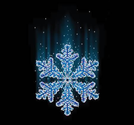 natural snowflake macro Stock Vector - 16829927