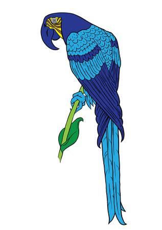 guacamaya caricatura: Blue Parrot