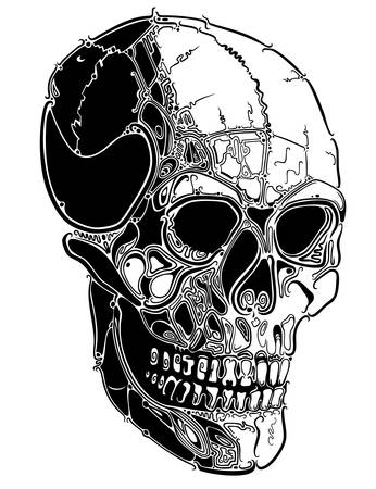 skull tattoo: Schedel lijnen Stock Illustratie