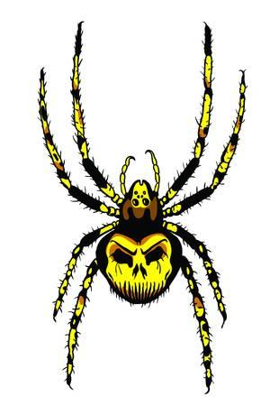 arachnophobia:  Vector  Spider Illustration