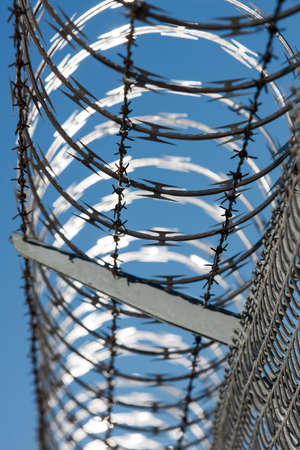 concertina: A fence topped with concertina razor wire