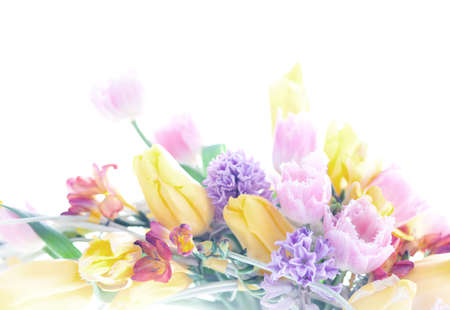 Collage postcard background mix from the 8 March spring flowers  Isolated on white photo