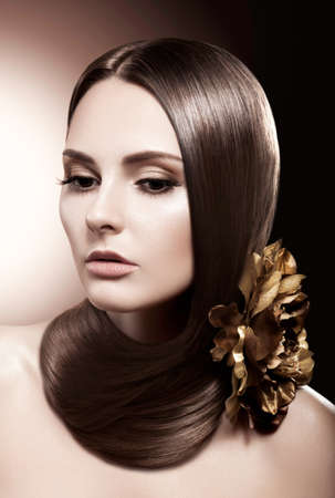 Brown Coiffure -  Beautiful Female Model with Healthy Long Hair Stock Photo - 16673277