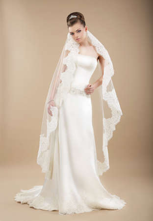 sophistication: Sophistication. Perfect Bride in Wedding Dress and Veil
