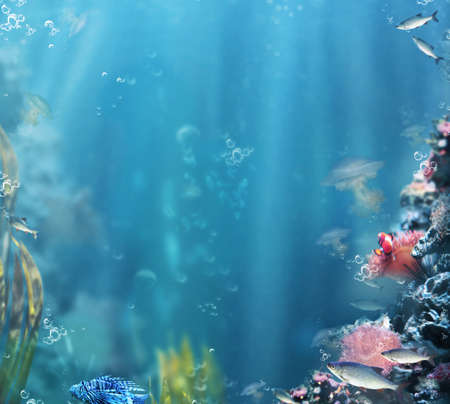 Marine. Sea Life. Aquarium with Fishes and Corals Stock Photo