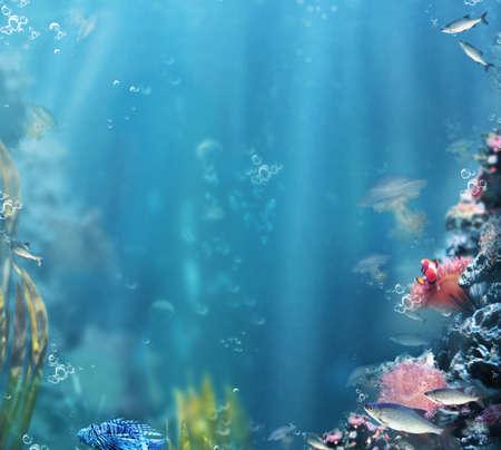 Marine. Sea Life. Aquarium with Fishes and Corals Фото со стока