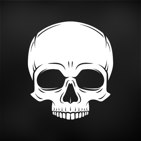 poison: Human evil skull vector. Jolly Roger logo template. death t-shirt design. Pirate insignia concept. Poison icon illustration. Illustration