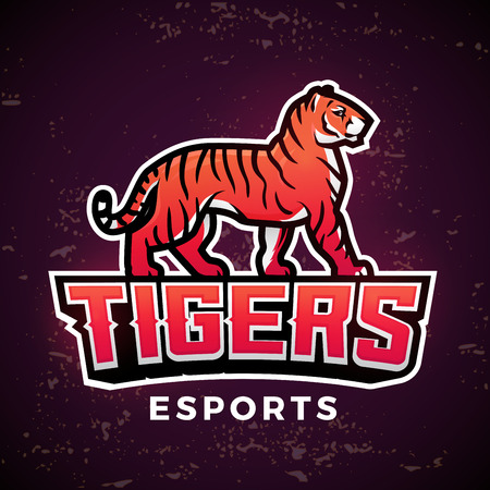 bengal fire: Premade tiger mascot vector. Sport logo design template. Football or baseball illustration. College league insignia, School team logotype on dark background