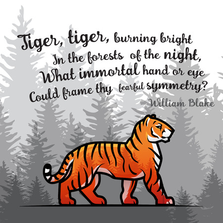 blake and white: Bengal Tiger in forest poster design. Double exposure vector template. Old poem by William Blake illustration on foggy background
