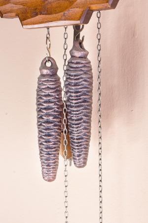 pendulum: Coocoo clocks weights with pendulum.