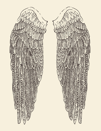 angel wings illustration engraved style hand drawn sketch Ilustrace