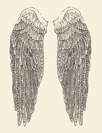 engelenvleugels illustratie gegraveerd stijl hand getrokken schets