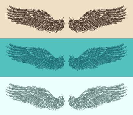 engelenvleugels set illustratie gegraveerd stijl hand getrokken schets