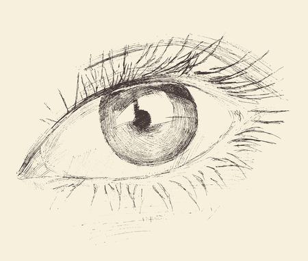Oog, schets, getrokken hand uitstekende illustratie gegraveerd, zwart en wit