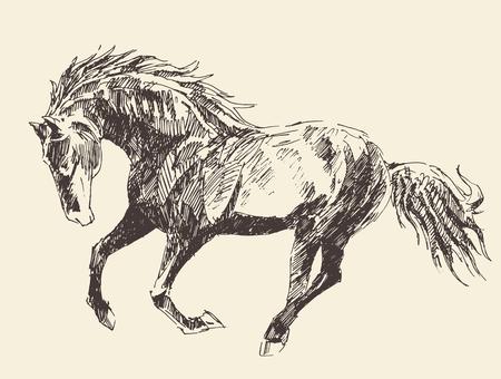 horse drawn: Horse vintage engraved illustration, retro style, hand drawn Illustration