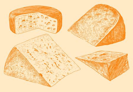 edam: Cheese set engraving hand drawn vintage  vector illustration Illustration
