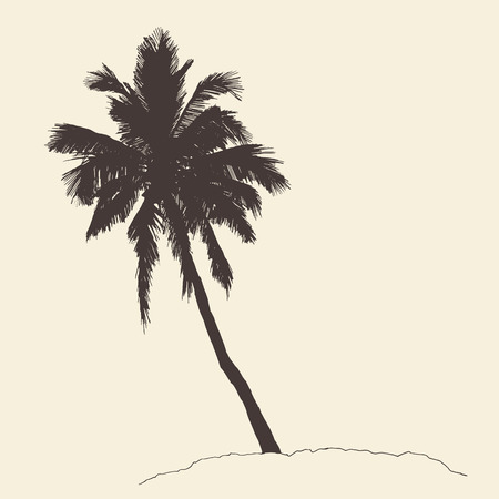 bounty: Palm tree Bounty vintage engraving vector illustration hand drawn