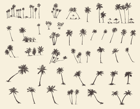 island paradise: Vector illustrations silhouette of palm trees hand drawn sketch forty pieces
