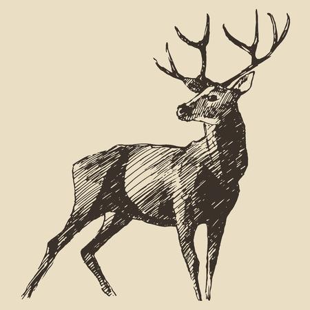사슴 조각 스타일, 빈티지 그림, 손으로 그린
