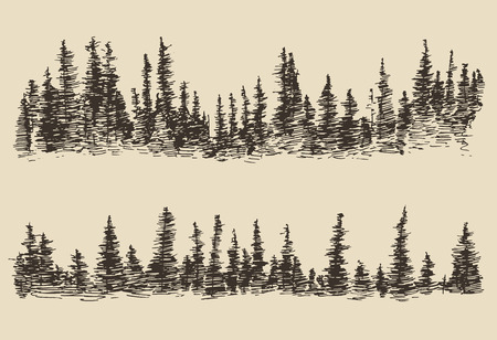 ilustracion: Montañas contornos de las montañas con el boceto bosque de abetos grabado ilustración vectorial dibujado a mano